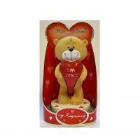 Message from the Heart Teddy Bear