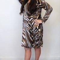 Brown Zebra Print Magic Dress